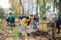 В Центральном парке Тулы появился сосновый бор «Слободы», Фото: 39
