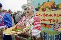 Алексей Дюмин посетил Епифанскую ярмарку, Фото: 1