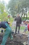 В Пролетарском районе высадили молодые деревья, Фото: 17