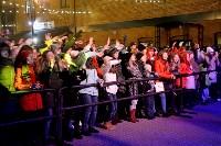 День народного единства в Ликерке, Фото: 82