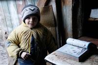 Из-за пожара тульская семья живет в сарае , Фото: 16