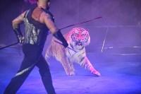 Цирковое шоу, Фото: 100