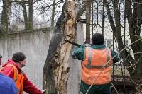 В Туле стартовала Генеральная уборка, Фото: 71