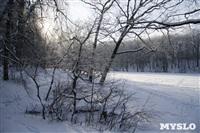 Зимняя сказка Платновского парка, Фото: 10
