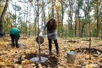 В Центральном парке Тулы появился сосновый бор «Слободы», Фото: 57