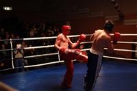В Туле прошла матчевая встреча звезд кикбоксинга, Фото: 17