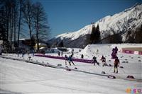 Состязания лыжников в Сочи., Фото: 12