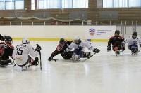 «Матч звезд» по следж-хоккею в Алексине, Фото: 14