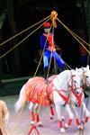 Цирк «Вива, Зорро!» в Туле , Фото: 58