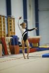 Спортивная гимнастика в Туле 3.12, Фото: 86