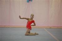 IX Всероссийский турнир по художественной гимнастике «Старая Тула», Фото: 42