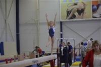Открытый турнир по спортивной гимнастике. 23-30 ноября 2013, Фото: 9