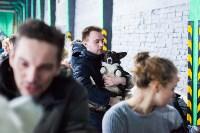 Выставка собак в Туле, Фото: 23