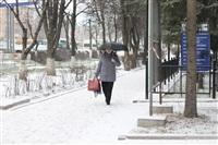 Снегопад в Туле, 28 ноября, Фото: 26