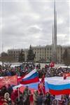 В Туле проходит митинг в поддержку Крыма, Фото: 15