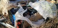 Столичный мусор в Тульской области, Фото: 9