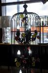 Магазин «Добрый свет»: Купи три люстры по цене двух!, Фото: 35