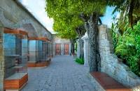 Проект нового здания Тульского экзотариума, Фото: 5