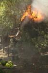 Пожар около Фролова, Фото: 3