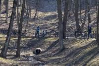 Солнечный день в Белоусовском парке, Фото: 22