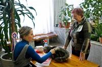 В Туле прошла международная выставка кошек «Зимнее конфетти», Фото: 7