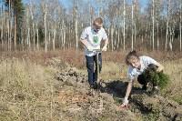 посадка леса в Одоевском лесничестве, Фото: 11