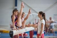 Тульские гимнастки готовятся к первенству России, Фото: 49