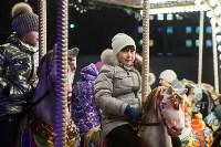 Дюмин осмотрел новогоднюю Тулу, Фото: 49