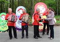 Юбилейный слёт гармонистов, Фото: 15