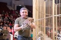 В Тульском цирке родился тигролев, Фото: 21
