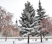 Снежная Тула. 15 ноября 2015, Фото: 65
