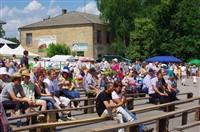 Фестиваль крапивы 2013, Фото: 24