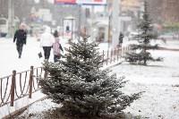 Первый снег, 2.12.2014, Фото: 24