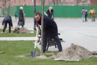 Члены правительства региона высадили аллею в кремле, Фото: 1