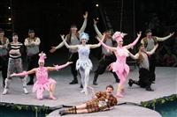 В Тульском цирке прошла премьера аква-шоу, Фото: 68