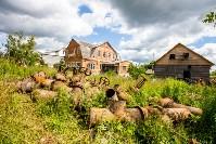 Снос домов в Плеханово. 6 июля 2016 года, Фото: 52