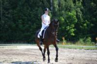 В Ясной поляне стартовал турнир по конному спорту, Фото: 10