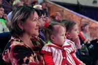 Цирк «Вива, Зорро!» в Туле , Фото: 72