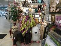 АРТХОЛЛ, салон подарков и предметов интерьера, Фото: 2