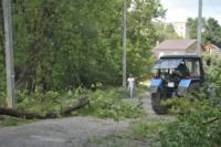 В Туле проводят работы по благоустройству зон отдыха. 26 июля 2014 год, Фото: 10