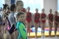 Соревнования по спортивной гимнастике на призы Заслуженных мастеров спорта , Фото: 16