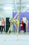 Кубок общества «Авангард» по художественной гимнастики, Фото: 108