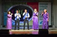 В Щёкино прошёл областной фестиваль «Земля талантов», Фото: 6