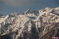 Состязания лыжников в Сочи., Фото: 18