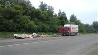 На Новомосковском шоссе у фуры развалился прицеп. 28.05.2014, Фото: 3