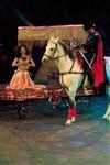 Цирк «Вива, Зорро!» в Туле , Фото: 70