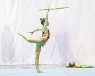 Кубок общества «Авангард» по художественной гимнастики, Фото: 78