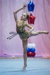 Соревнования по художественной гимнастике 31 марта-1 апреля 2016 года, Фото: 113