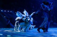 Шоу фонтанов «13 месяцев»: успей увидеть уникальную программу в Тульском цирке, Фото: 145