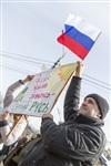 Митинг в Туле в поддержку Крыма, Фото: 43